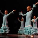 Festival Dansa Jove (12)