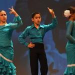 Festival Dansa Jove (30)