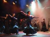 Dansa Jove (1)