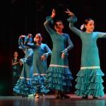Dansa Jove (14)
