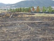 Incendi Montcada Mas Duran (5)