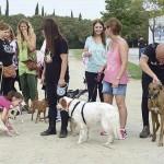 Caminada Animales Ripollet (3)