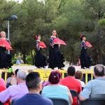 Festa Sant Andreu (3)