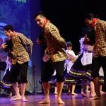 Festival Dansa Popular (14)