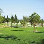 Zona humida Parc Pinetons (4)