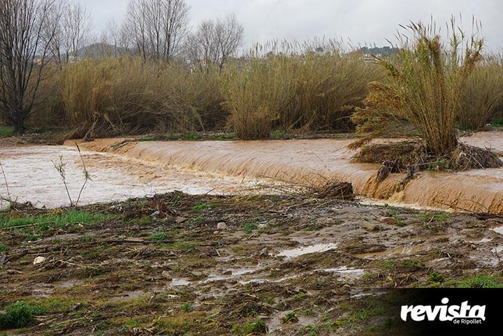 Riu Ripoll (2)