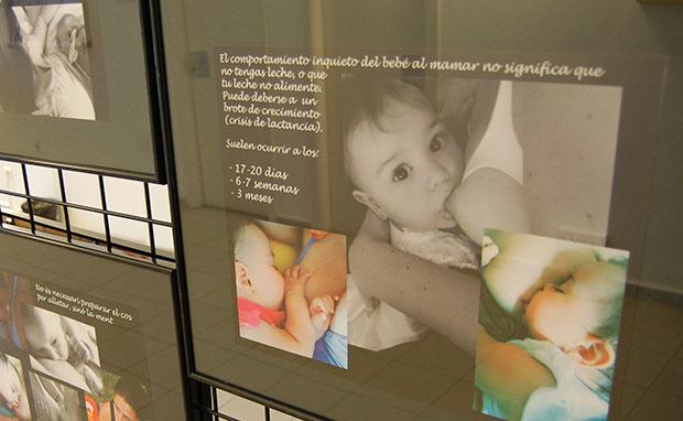 Expo Mamicria alletament (5)