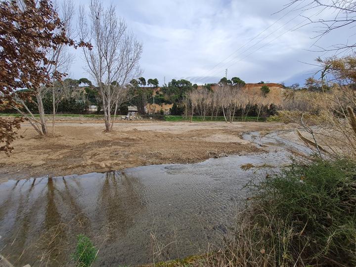 Retirada canya riu