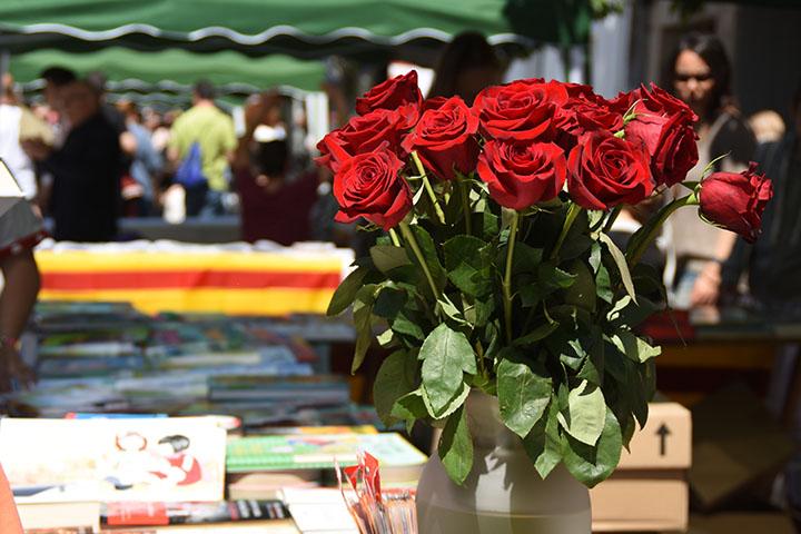 Sant Jordi 2016 (44)