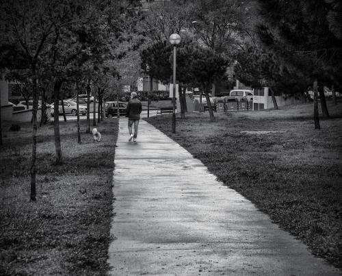 El passeig amb el gos
