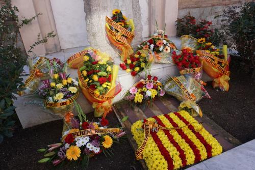 Diada Nacional Catalunya 2020 (71)